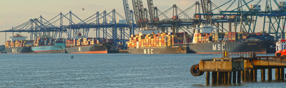 Cargo ships loaded with stacks of ISO freight containers